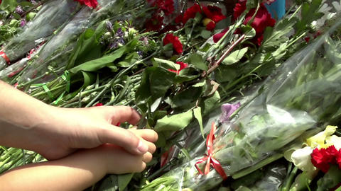 Laying Flowers stock footage