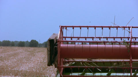 Harvester gathers the wheat. Part close-up Footage
