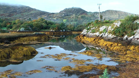 idyllic pond in ireland at ring of kerry Footage