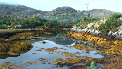 idyllic pond in ireland at ring of kerry Stock Video Footage