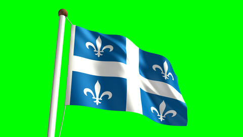 Quebec flag Stock Video Footage