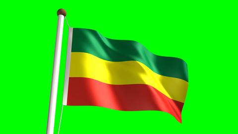 Ethiopia flag Stock Video Footage