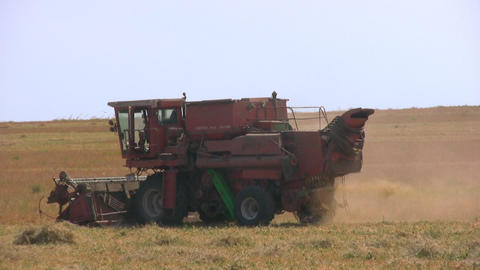 Harvester in the field pea Footage