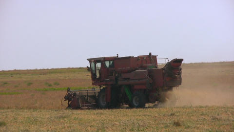 Harvester in the field pea Stock Video Footage