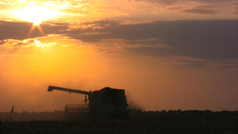 Harvester at sunset Stock Video Footage