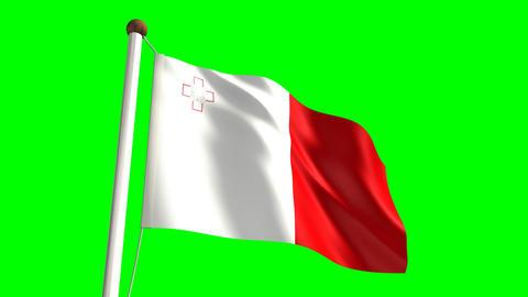 Malta flag Stock Video Footage