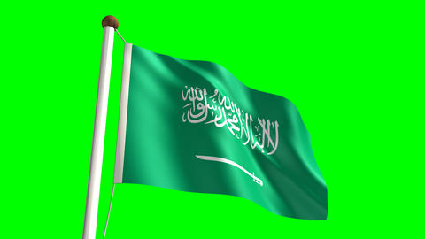 Saudi Arabian flag Stock Video Footage