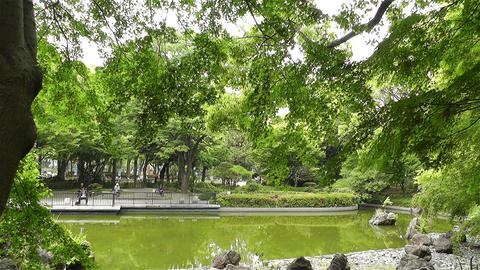 Park in Yokohama Japan 1 Stock Video Footage