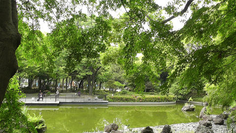 Park in Yokohama Japan 1 Footage
