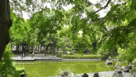 Park in Yokohama Japan 1 Stock Video Footage