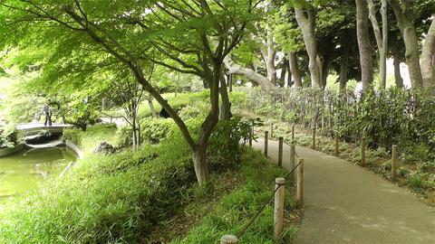 Park in Yokohama Japan 3 Stock Video Footage