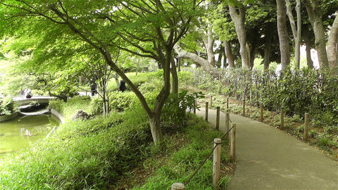 Park in Yokohama Japan 3 Stock Video Footage