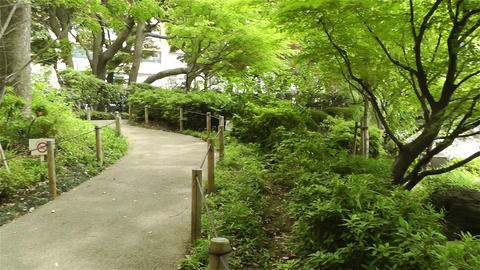 Park in Yokohama Japan 5 Stock Video Footage