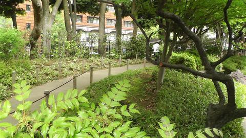 Park in Yokohama Japan 9 Stock Video Footage