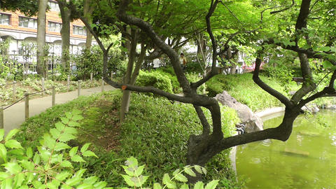 Park in Yokohama Japan 9 Stock Video Footage