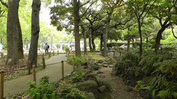 Park in Yokohama Japan 11 Stock Video Footage