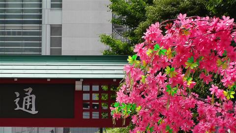 Tokyo Asakusa Japan 8 Footage