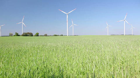 Polish Village, Grain Field And Windmills In Poland stock footage