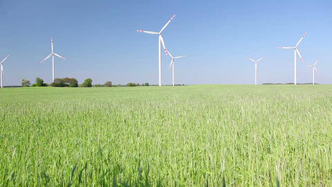 Polish village, grain field and windmills in Poland Stock Video Footage