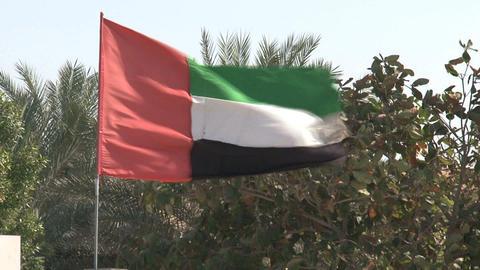 United Arab Emirates flag Footage