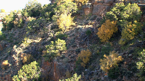 Zoom out from the rocks in the Grand Canyon Stock Video Footage