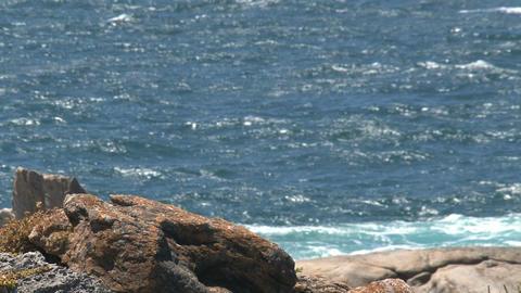 Wave collide at the rocks at Kangaroo Island Stock Video Footage