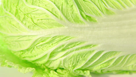 Chinese cabbage Stock Video Footage