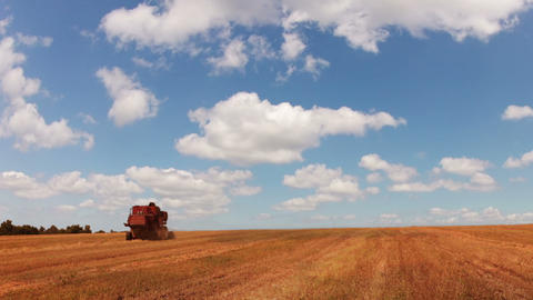 Harvester in the field Stock Video Footage