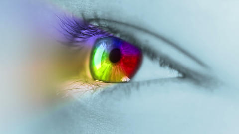 Multicolour iris Footage