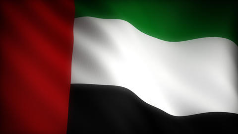 Flag of United Arab Emirates Stock Video Footage