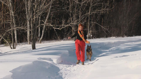 Woman playing with a dog on a snow Footage