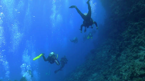 Group of divers swims over coral reefs Stock Video Footage