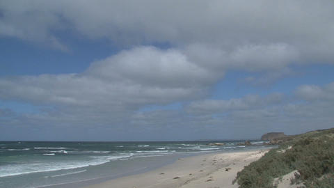 Seal Bay Kangaroo Island Stock Video Footage