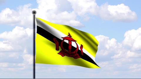 Animated Flag of Brunei / Animierte Flagge von Bru Stock Video Footage