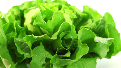 Organic food, lettuce Footage
