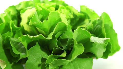 Organic food, lettuce Stock Video Footage