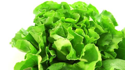 Beautiful green salad Stock Video Footage