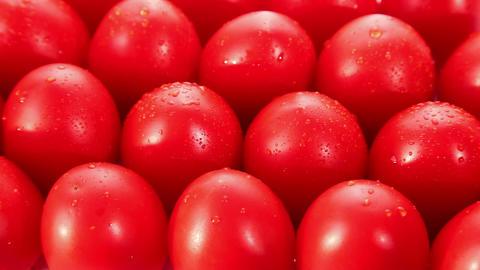 Tomato Stock Video Footage