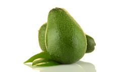 Avocados on white Stock Video Footage