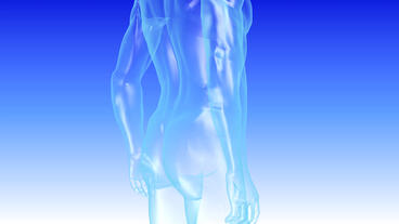 3D transparent grid human nude body Animation