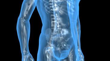 3D transparent human nude body & skeleton Stock Video Footage