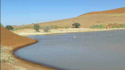 salt pan and sea at sossusvlei, namibia Stock Video Footage