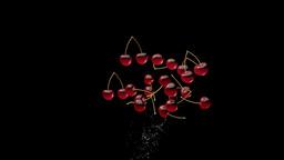 Water splashing cherries, alpha Stock Video Footage