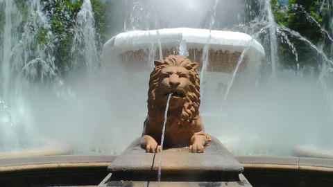 Fountain of Lions Footage