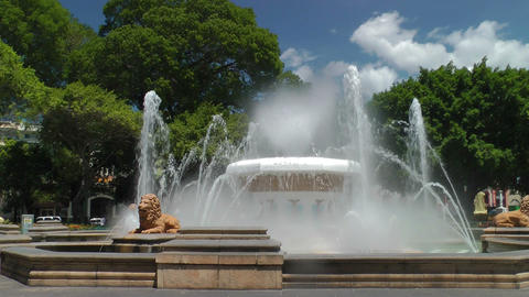 Fountain of Lions Stock Video Footage
