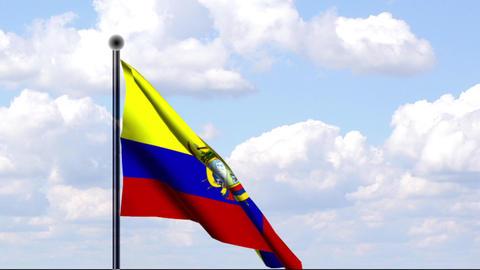 Animated Flag of Ecuador / Animierte Flagge von Ec Stock Video Footage