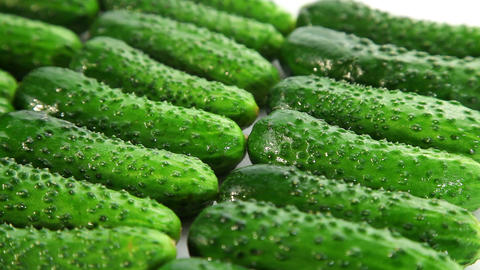 Fresh green cucumbers, dolly shot Stock Video Footage