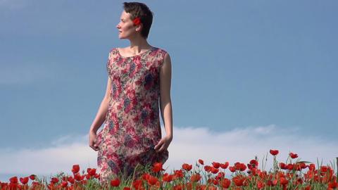 Girl in the Poppy Field Stock Video Footage
