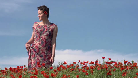 Girl in the Poppy Field Stock Video Footage