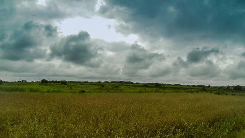 Dark clouds above field Stock Video Footage